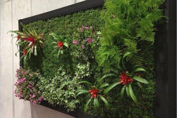 jardin vertical artificial Cuadro Jardin Vertical Artificial cuadro ve al 80x35cm plantas